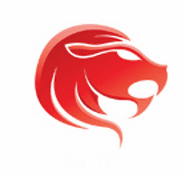 Điểm mạnh trong công việc của cung hoàng đạo sư tử