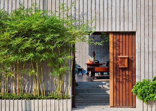 Cây hợp phong thủy trước nhà : cây tre trúc